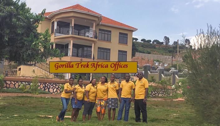 Gorilla Trek Africa Careers - Work / Train with Us